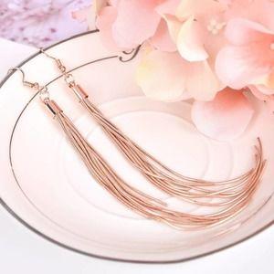2/$15 Rose Gold Tassel Drop Earrings
